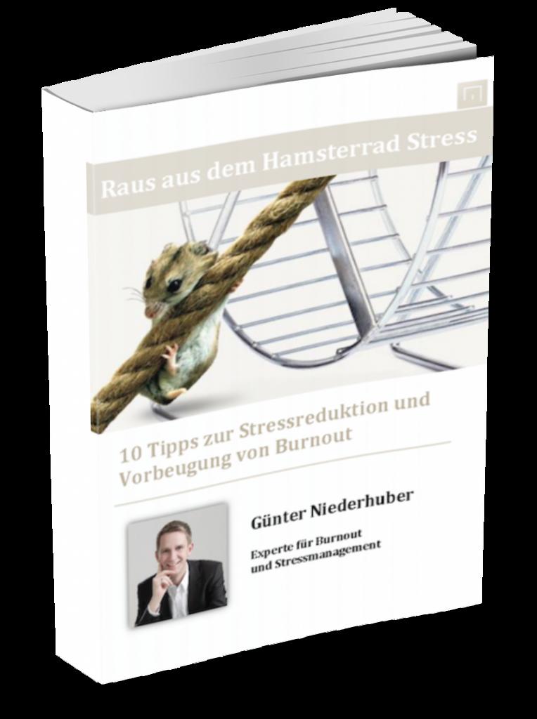 Das kostenlose Ebook gegen Stress Burnout Prävention Stressmanagement