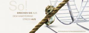 Das Hamsterrad Stress verlassen Hamsterrad mit Seil und Hamster